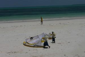 Le kite attire les curieuses