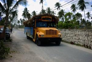 Le bus local