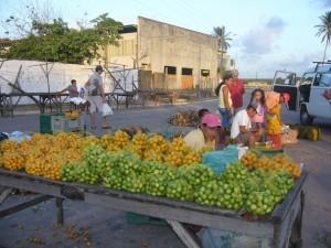 Vente de fruits
